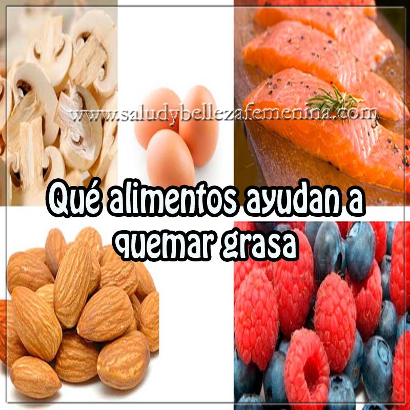 Salud y Nutrición,  alimentos quema grasa , alimentos bajar peso , alimentos para adelgazar