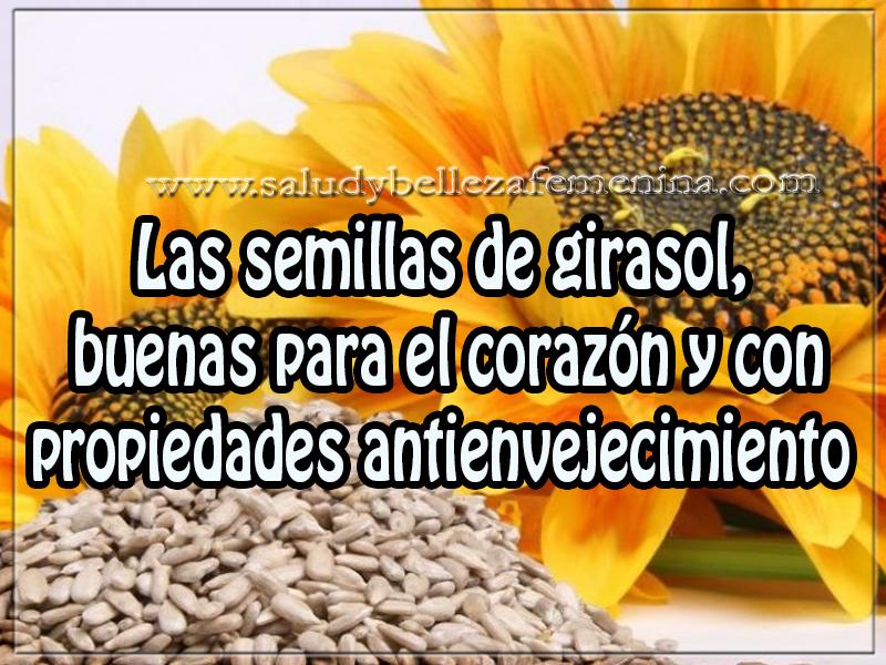 Salud y bienestar , las semillas de girasol,  buenas para el corazón y con  propiedades antienvejecimiento