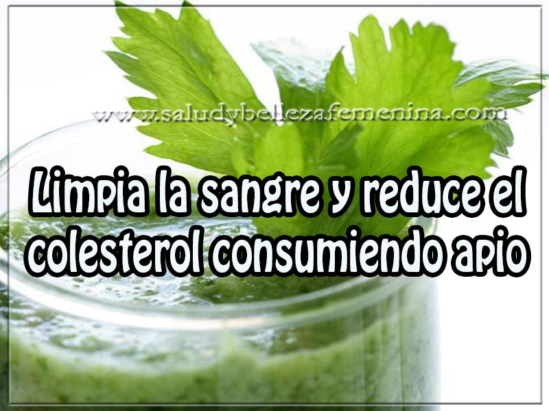 Salud y bienestar , limpia la sangre y reduce el colesterol consumiendo apio