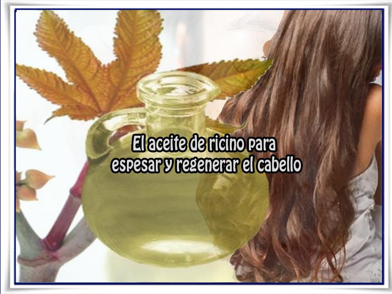 Cuidados del cabello, belleza, aceite ricino