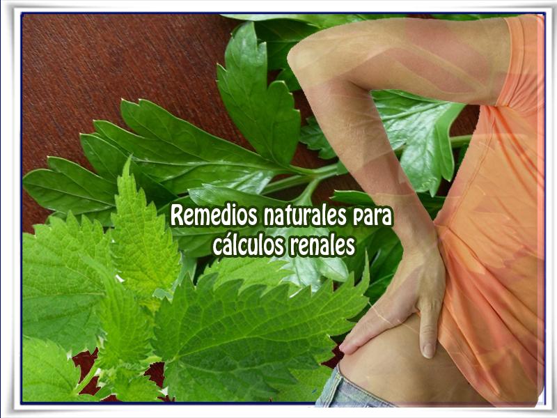 Remedios y tratamientos, perejil, riñones, calculos