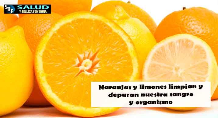 Naranjas y limones limpian y depuran nuestra sangre y organismo