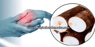 Poderoso remedio contra la artritis la yuca o mandioca - Remedios contra la humedad ...