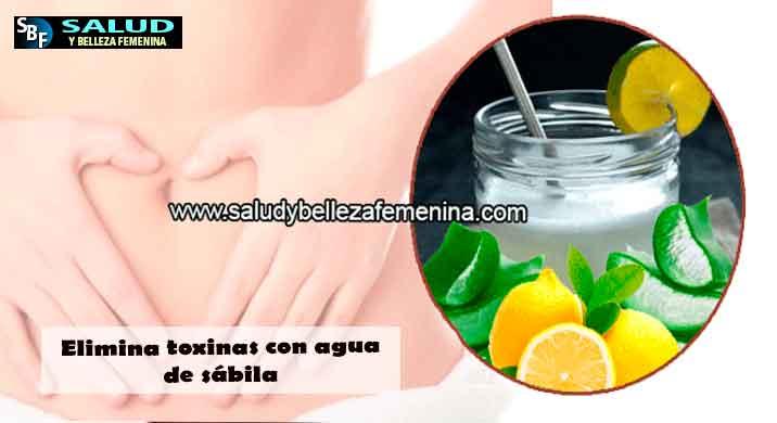 Elimina toxinas con agua de sábila