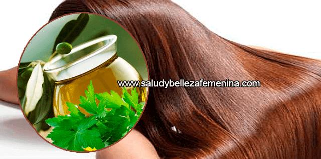 Cuidados  del cabello, tratamientos naturales