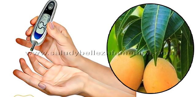 Controla la diabetes con Hojas de mango, las hojas de mango han demostrado ser la mejor medicina naturista para la diabetes, ya no sólo por que ayudan a controlar los niveles de azúcar en sangre sino porque se trata de un tratamiento completamente natural, seguro, saludable