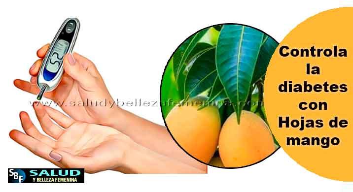 Remedios-y-tratamientos - Controla-la-diabetes-con-Hojas-de-mango