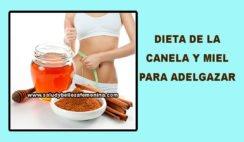 Dieta de la canela y miel para adelgazar