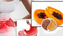 Jugo de papaya y semillas de lino para la Gastritis