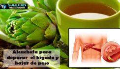 Alcachofa para depurar el hígado y bajar de peso